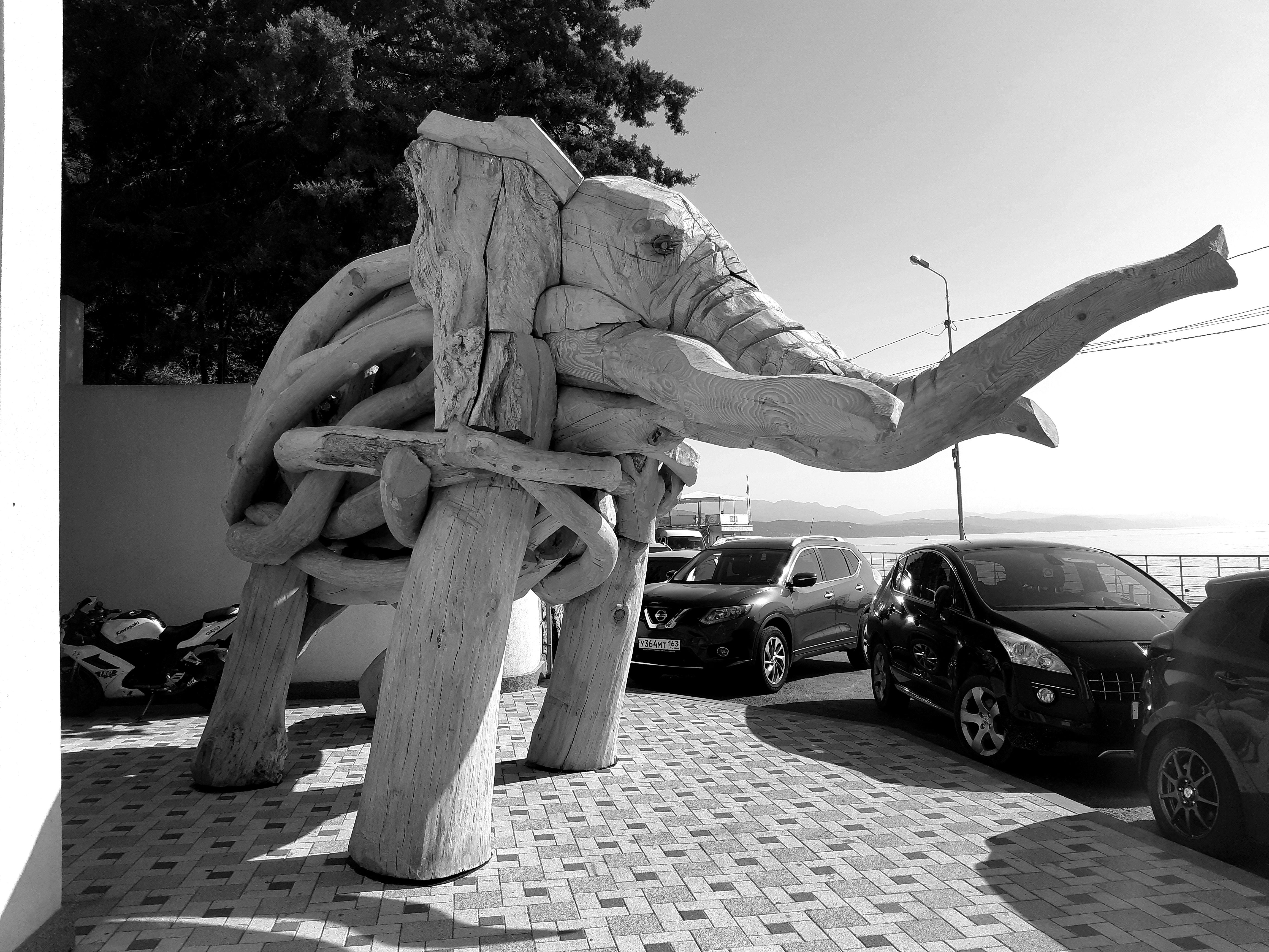 Derevyannyj slon Nikolaj Polisskij 11